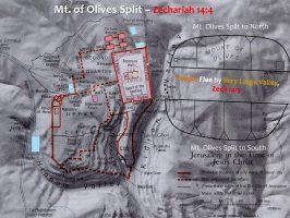 00_ZECH 14_1-5_MT OF OLIVES SPLIT_03B