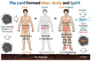 01_MAN_BODY + SPIRIT