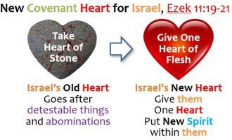 03_NEW HEART_EZEK 11