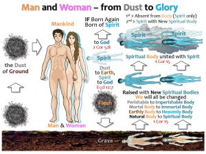 04_MAN AND WOMAN_DUST TO GLORY