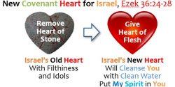 04_NEW HEART_EZEK 36