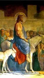 0_Jesus_DONKEY_Jerusalem_06
