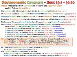 DEUTERONOMIC COVENANT_DEUT 29 & 30