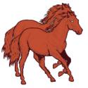 SORREL HORSES